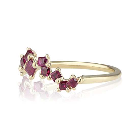 A Story In Ruby Ring   TER